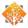 Springtree Group