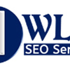 Wlm SEO Services