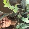 Explore Mollie Ennis's Profile