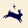 Run Rabbit Run Collective