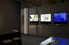 All sizes   BS_1   Flickr - Photo Sharing! #studak #design #exhibition #studio #universal