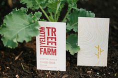 Yellowtree Farm business card #stamp #business #kale #card #wood #handmade #grain #farm #stamped #organic