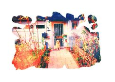 Mr Fischbach #front #door #realism #magic #dog
