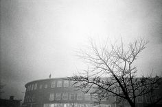 All sizes | Den Haag | Flickr - Photo Sharing! #mm #white #analog #holland #photo #35 #black #photography #film