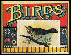 FFFFOUND! | Birds | Sheaff : ephemera #birds
