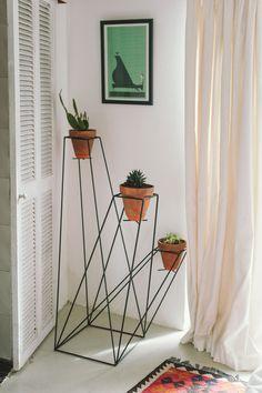 Plant polygons