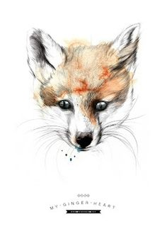 Lítill Blóm: my ginger heart #neumann #fuchs #handdrawn #fox #design #graphic #aquarell #poster #miuminou #ini