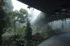CJWHO ™ (Cooled Conservatories at Gardens by the Bay in...)