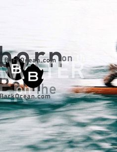 quiksilver pro, nyc 2011+ m i s c - David Carson #layout #carson #typography