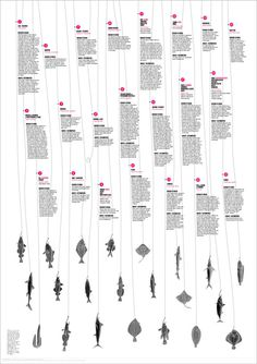 Poster, layout, infographic, fish, statistics, extinction