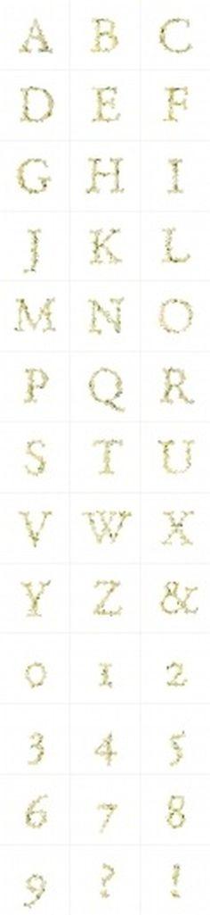 Novo Typo - LILY - Character Set #novo #design #typeface #typo #typography