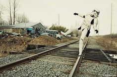 Hollywood Toys by Daniel Picard #photography