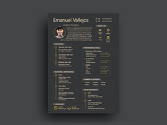 Starter Resume - Free Illustrator Resume Template with Attractive Design