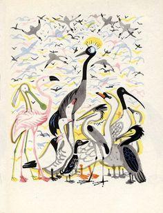 Animalarium: The Rainbow Book