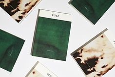 Pulp: A Short Biography of the Banished Book by Shubigi Rao. Designed by SWELL.