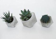 concrete planter #concrete #frauklarer #planter #geometric #minimalist