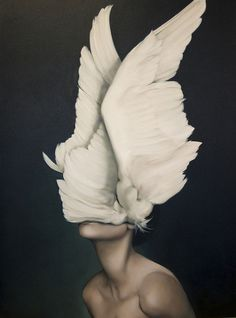 AMY JUDD #bird #woman #wings