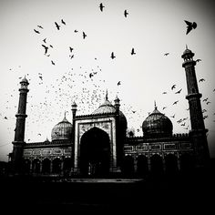 India 2 bis #white #india #& #black #photography