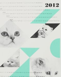 Need Supply Co. / Fieldguided / Dreamcats Calender #type #calendar #shapes #cats #organization #visual space