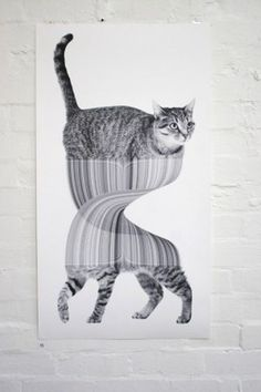 Art « Jonathan Zawada #cool #kitties