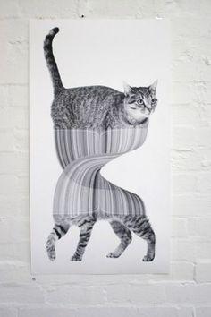 Art « Jonathan Zawada #kitties #cool