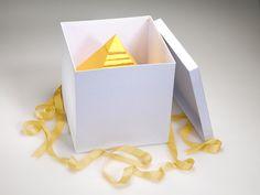 Camel Presentation Kits for new pack design etc on Behance #pack