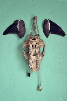 HIGH ROAD.LOW ROAD #wings #skull #mint