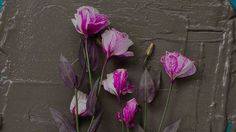 BLDG5 Records - Home #photography #swag #flowers