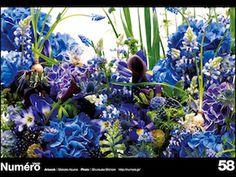 Numero TOKYO #58 Botanical Sculpture