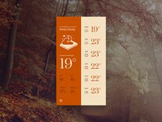 Red Forecast Weather App Theme
