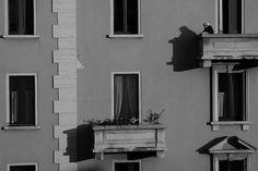Milan #facade #architecture
