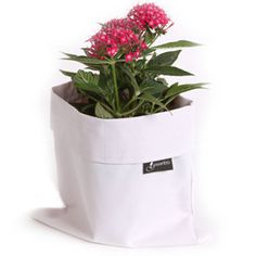 Bring your plants indoors with the Fiorina Indoor Planter Case, which allows extra water to drain into a sealed case.