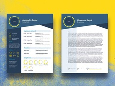 Free Infographic CV Template with Cover Letter Page