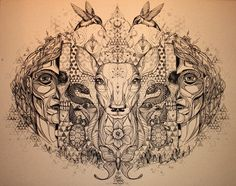Song of the White Deer