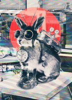 Do you Like this artwork? #illustration #bunny