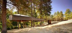 Tree Snake House8 #architecture #house #tree