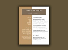 Free Creative Resume Template for Sales Manager Resume