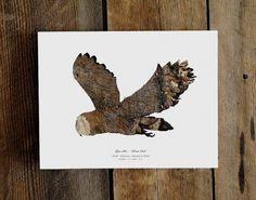 il_fullxfull.274975141.jpg (855×673) #stencil #paper #owl
