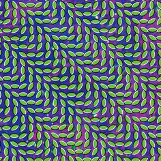 This is the cover art for the Album Cover Merriweather Post Pavilion by the artist Animal Collective. #trippy #illusion #album