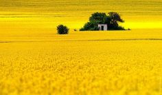 Landscape Photography by Evgeni Dinev » Creative Photography Blog #inspiration #photography #landscape