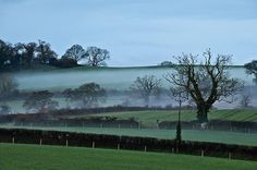 Landscape Photography by Hazel Greenwood | Professional Photography Blog #inspiration #photography #landscape