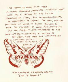 moth | Tumblr #moth #drawing #illustration