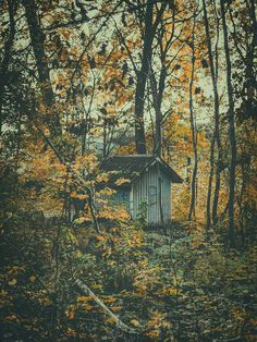 Photograph by Pale Grain #print #cottage #photography #gteborg #sweden #nature #nordic