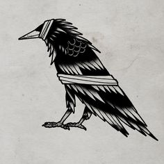 Bandaged Crow © 2012 Tom Gilmourhttp://www.tomgilmour.comhttps://www.facebook.com/tomgilmourillustration #white #black #tattoo #and #flash