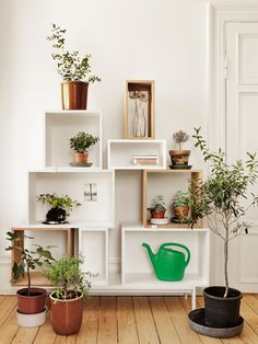 Bringing the outside in: top 10 indoor oases #garden #interior #boxes #plants