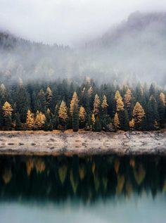 Autumn woods across the lake photo by Samuel Ferrara