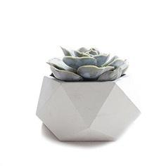Handmade Concrete Geometric Succulent Planter