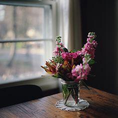 Likes | Tumblr #flowers