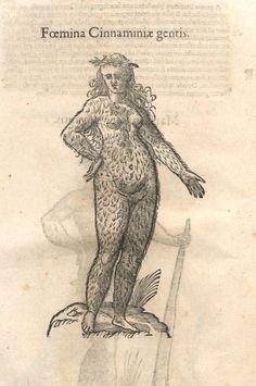 000030 #naturalism #aldrovandi #illustration #latin #ulisse #drawing