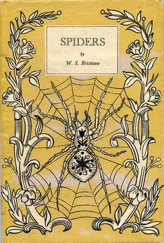 Spiders, 1947 #design #graphic #book #spiders #cover #insect #vintage #arachnophobia #web